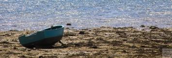 <h5>Barque (Petite Mer de Gâvres - 56)</h5><p>16 cm x 50 cm</p>