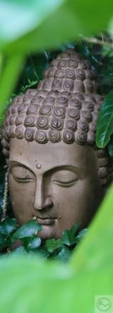<h5>Tête Bouddha (56)</h5><p>32,8 cm x 65 cm et 12 cm x 32,5 cm</p>