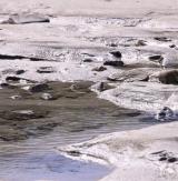 <h5>Trou d'eau (Ploudalmézeau - 29)</h5><p>20 cm x 20 cm</p>