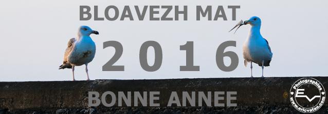 Voeux2016EV