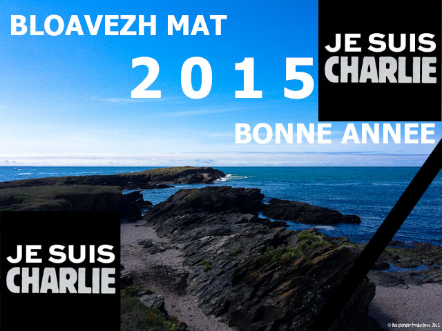 Voeux 2015 CHKP